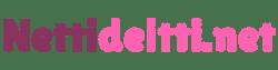 Nettideitti.net logo